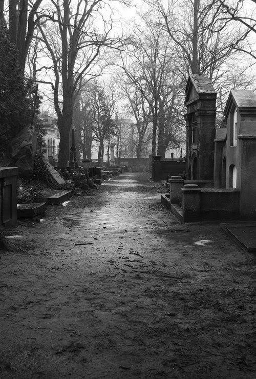 The ground begins to rumble and shake. The gravestones begin to fall over. The doors to the mausoleums crash open, to sway back and forth on their hinges. The wind rustles the dried leaves covering the mounds of dirt in the graveyard. The dirt begins to move. Hands reach out from below. Bodies follow to rise up from the earth. The Dead are ready to join the dark shadows of the night. No one is safe any longer. THE DEAD GAME by Susanne Leist