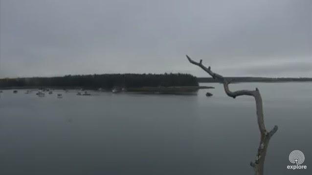 Audubon Boat House Osprey Nest