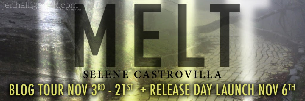 MELT Release Launch and Blog Tour Sign Up