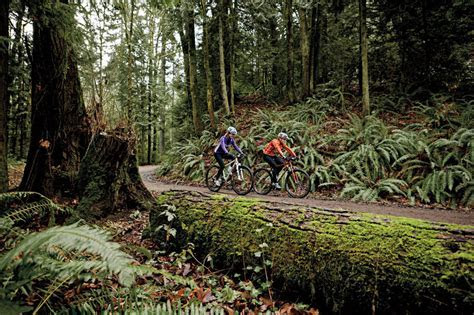 Forest Park Guide: The Best Bikes   Portland Monthly