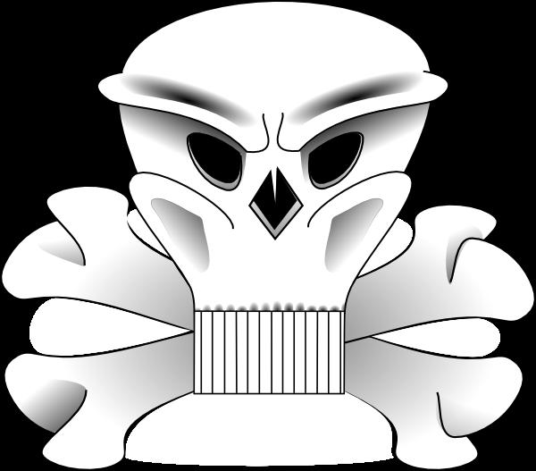 sophia hyatt khan_08. bones of skull.
