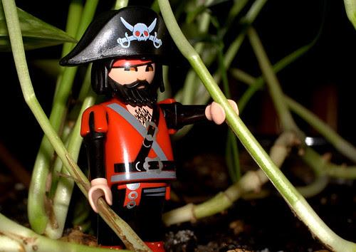 Una de piratas en la isla con tesoros