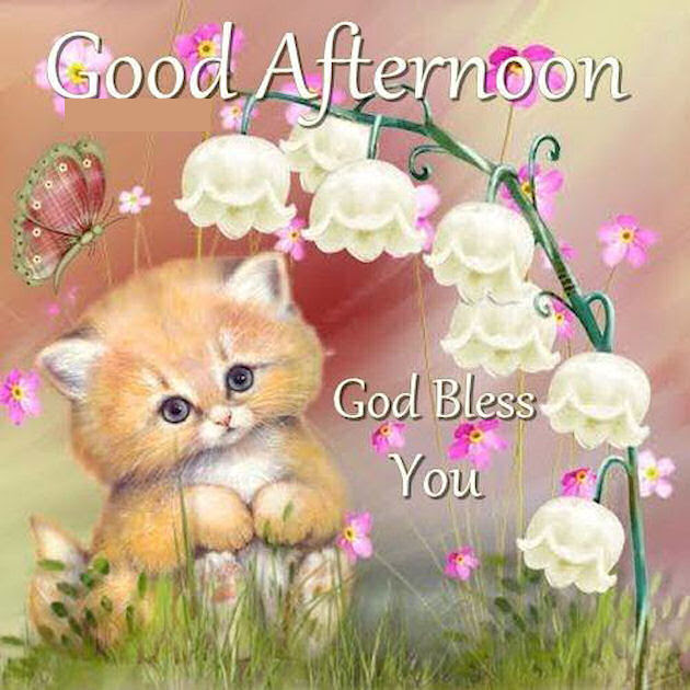 Good Afternoon God Bless You Cute Quote Pictures Photos And Images