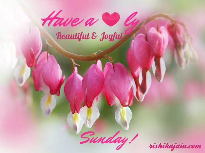 Wish You A Beautiful Joyful Sunday Inspirational Quotes