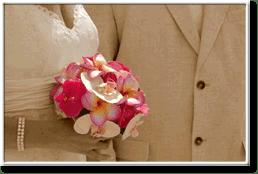 wedding price option