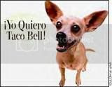 taco bell Pictures, Images and Photos