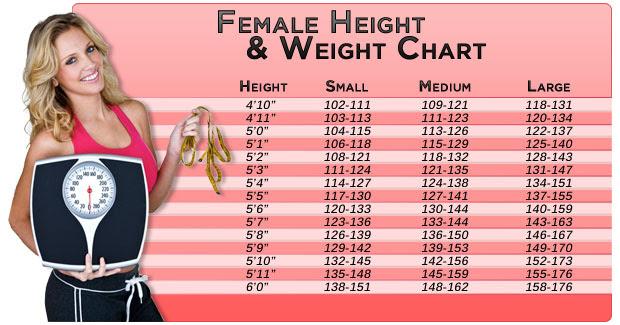 average body fat percentage female uk