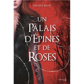 Un palais d'épines et de roses - Un palais d'épines et de roses, T1