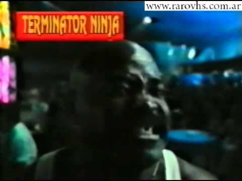 terminator ninja