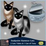 Sealpoint Siamese Cats CU