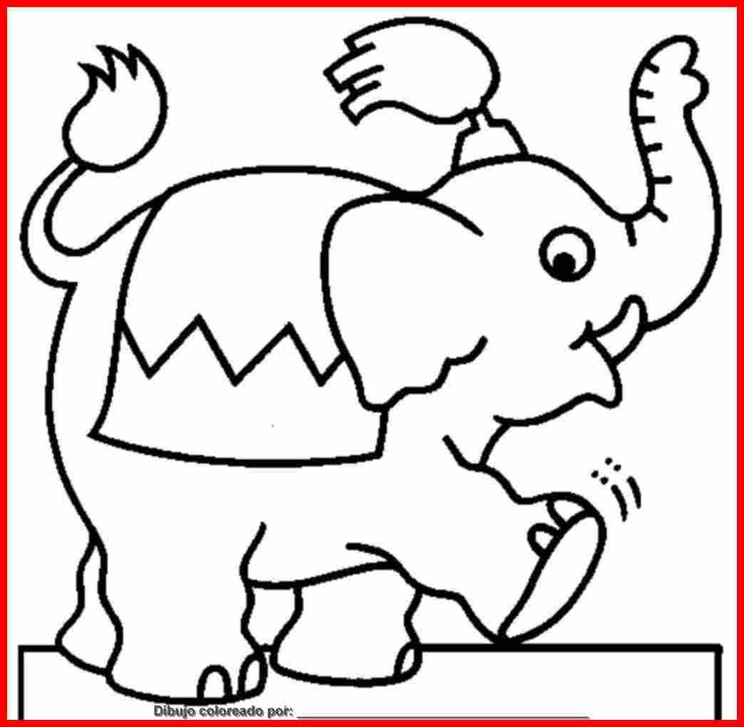 Dibujo De Elefantes Para Colorear E Imprimir