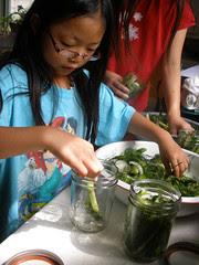 Olivia Putting Cucumbers in Jar