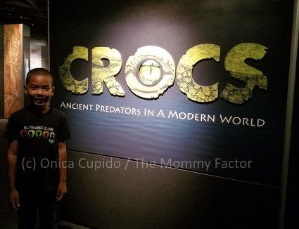 AMNH Crocs, Indians and Whales