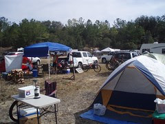 Team Collard Green Base Camp