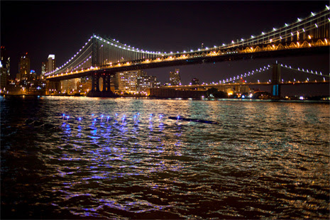 Network of floating tubes at Pier 35 in the East River.