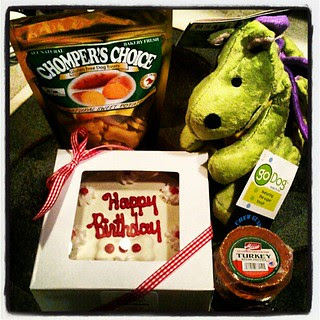 Sophie's #birthday goodies! #cake #dogtoy #dogtreat #dogstagram #dogs #love