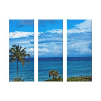 Jupiter Florida Stretched Canvas Print