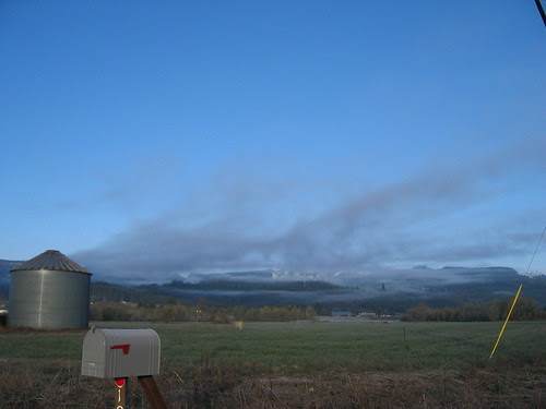Another view from Gales Creek Rd