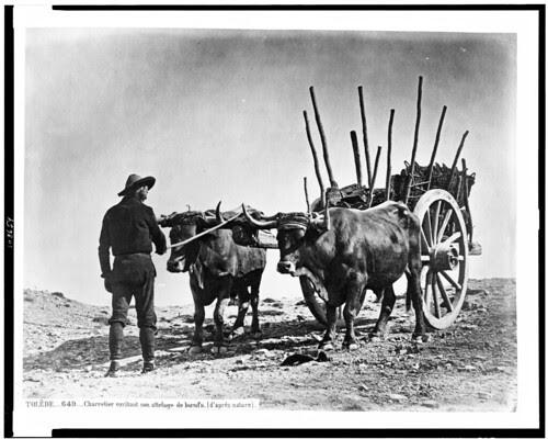 Boyero en Toledo en el siglo XIX. Fotografía de Jean Laurent. The Library of Congress of the United States of America
