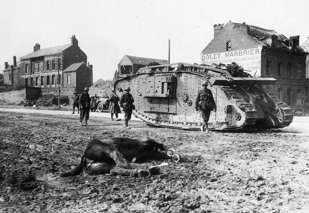 Os animais também lutaram na Primeira Guerra Mundial 32