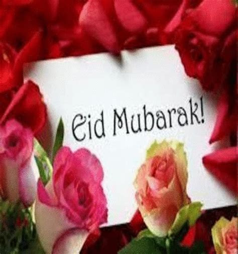 Wishing The Best Floral Eid  Free Floral Wishes eCards