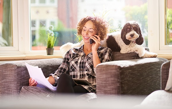 Guide to finding pet insurance in the US - Your Dog