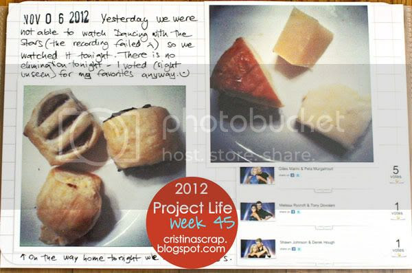 Project Life - Week 45