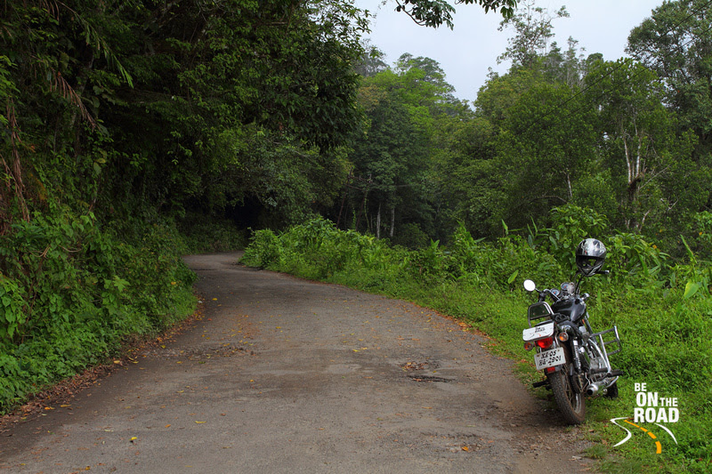 The extremely dense and quiet Vazhchal Forest roads to Chalkudy - perfect motorcycling terrain