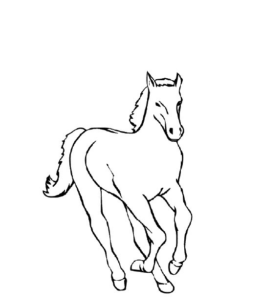 ausmalbilder pferdekopf  pferde ausmalbilder