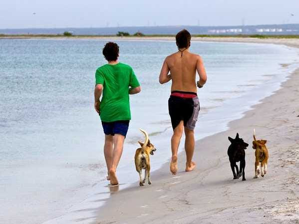 Is walking as effective as running?