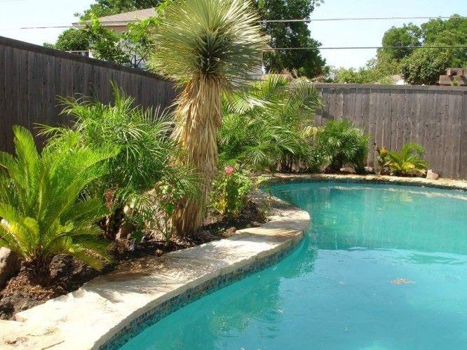 Idea Landscape Backyard Pool Landscaping