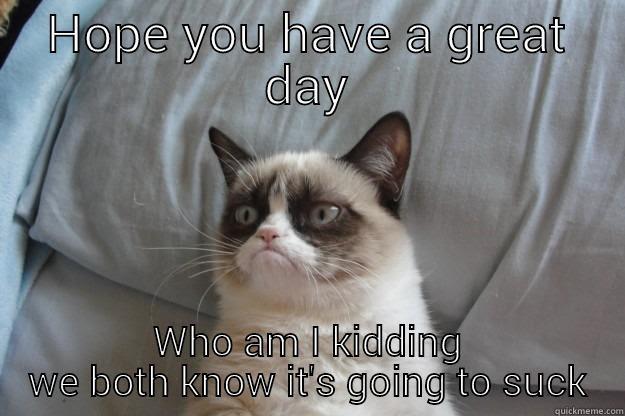 Good Day Grumpy Cat Quickmeme