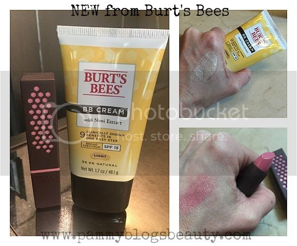 Pammy Blogs Beauty Natural Everyday Makeup With Burt S