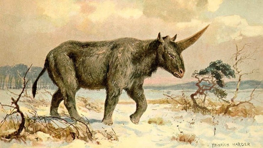 Painting of Elasmotherium sibiricum by Heinrich Harder, ca. 1920 (Heinrich Harder, Wikimedia Commons [Public Domain])