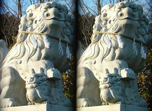 DSCF1408 鷲神社の狛犬 (parallel 3D)