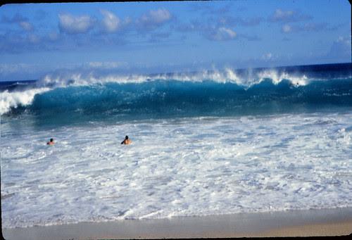 IMG_00648_Surfers