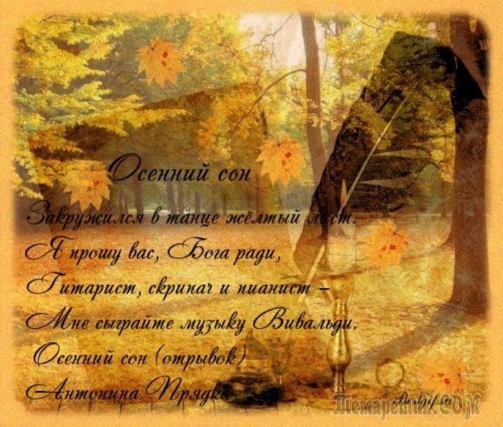 стихи о осени короткие красивые картинки без