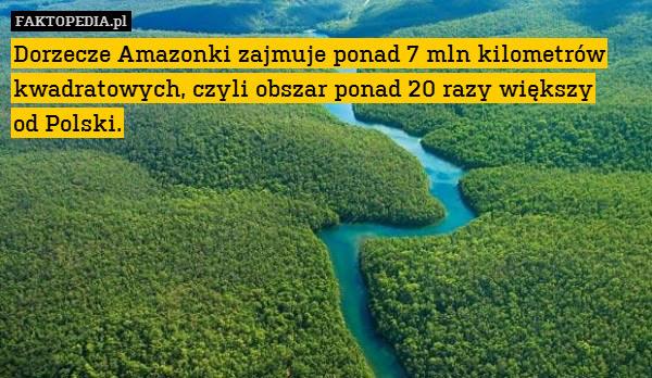 Dorzecze Amazonki zajmuje ponad – Dorzecze Amazonki zajmuje ponad 7 mln kilometrów kwadratowych, czyli obszar ponad 20 razy większy od Polski.