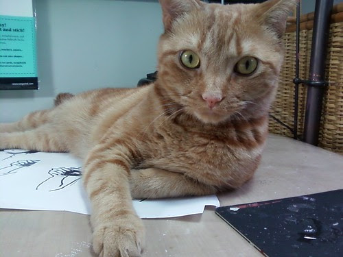 Stanley cat is helping with my artwork