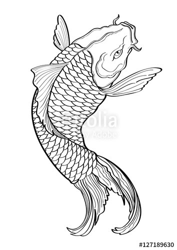 Koi Fish Line Drawing At Getdrawingscom Free For Personal Use Koi