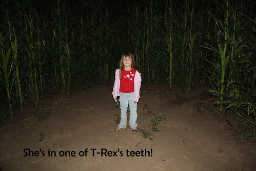 corn maze - tooth