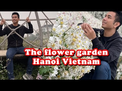Flower farm in Hanoi Vietnam