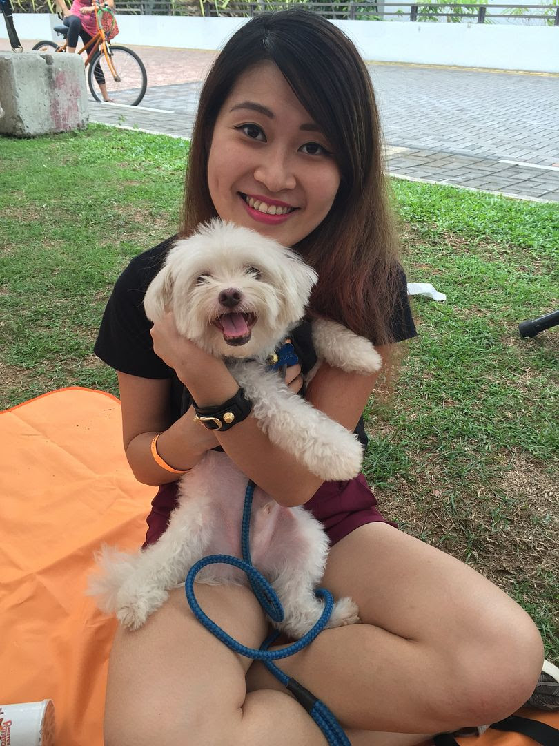 photo Pets Picnic 2016 24.jpg