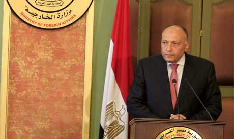 Egyptian Foreign Minister Sameh Shoukry  (Reuters)