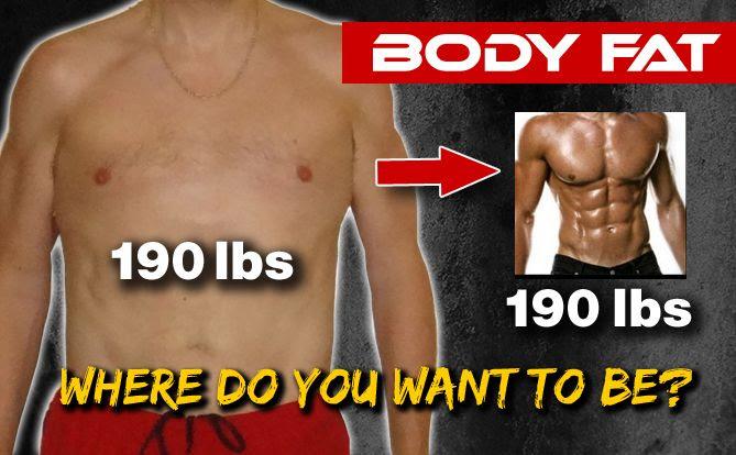 body fat percentage chart athlean x