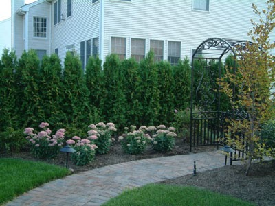 Indi scaping design design your own backyard landscape for Design your own front yard