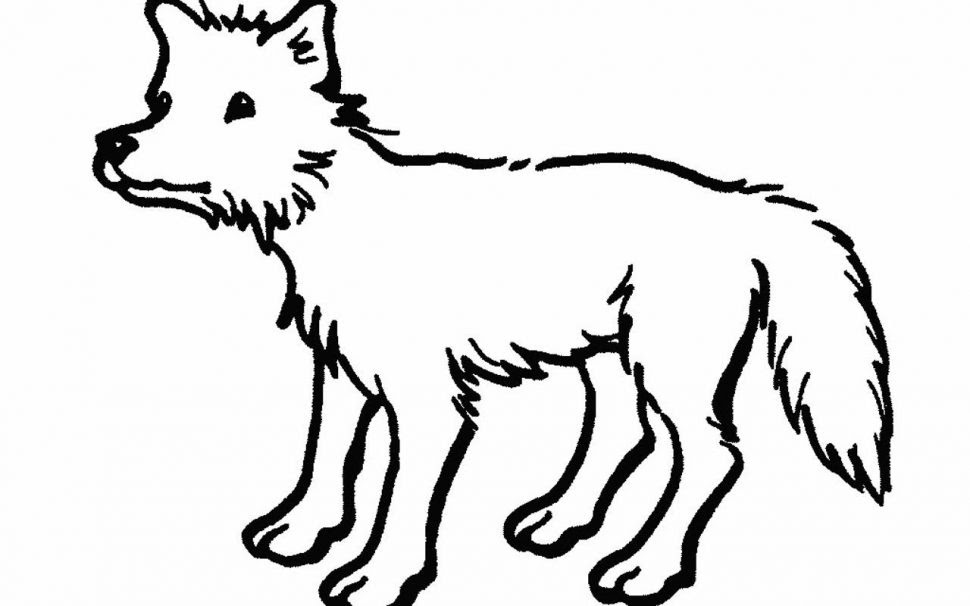 56 Top Coloring Pages Wolverine Animals Pictures