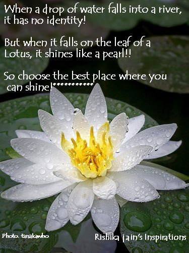 Thought For The Daywhen A Drop Of Water Falls Into A River