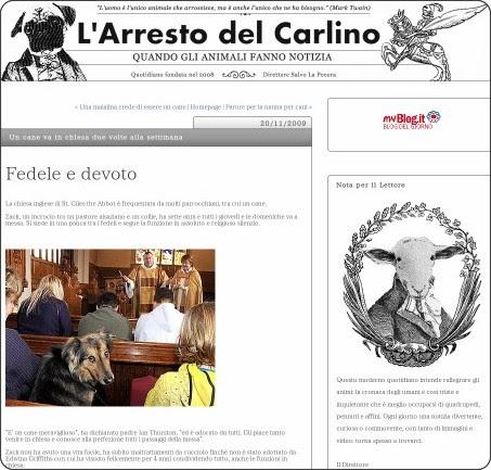 http://larrestodelcarlino.myblog.it/archive/2009/11/17/un-cane-va-in-chiesa-due-volte-alla-settimana.html