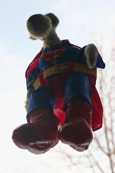 Superhugo_kommt_an_2